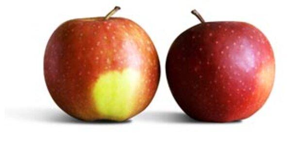 Apfel ist beliebtestes Obst der Österreicher
