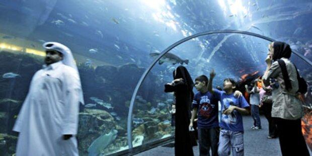 Haifischbecken in Dubai hatte Sprung