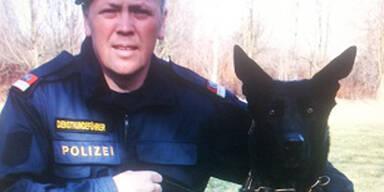 Polizeihund Argos
