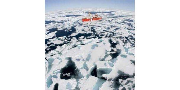 Rekordtemperaturen in der Arktis