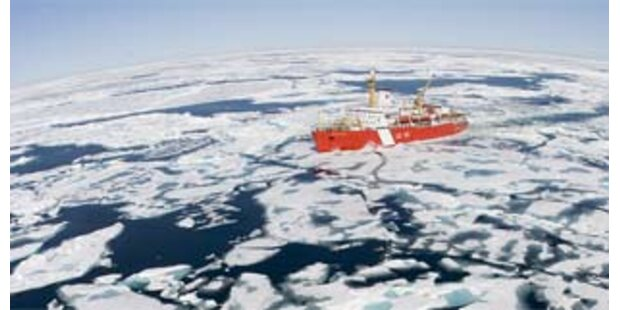 Forscher von schmelzender Eisscholle gerettet
