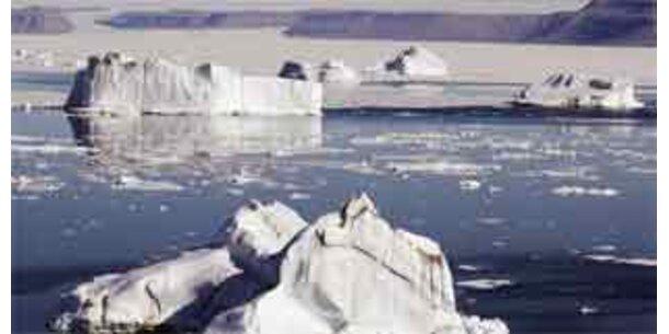 Gesamte Antarktis von der Klimaerwärmung betroffen