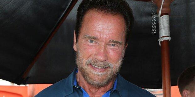 Comeback: Arnie räumt im Häfen auf