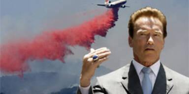 Arnie brennt der Hut