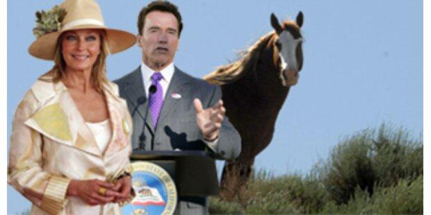 Arnie macht Bo Derek zur Pferdebeauftragten