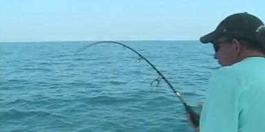 Raubfisch springt in Anglerboot