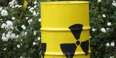 Verdacht auf Vertuschung bei Atompanne