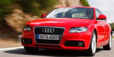 Audis wichtigstes Pferd im Stall