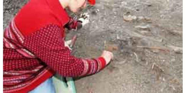 Ausgrabungen in Rankweil kommen unter Glastresor