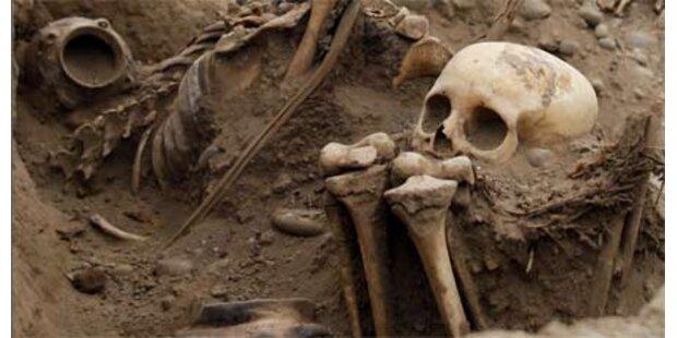 Hund brachte 7000 Jahre alte Knochen