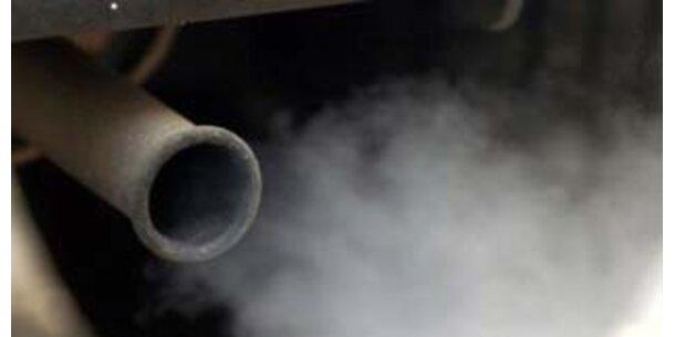 Diesel-Abgase stressen das Gehirn