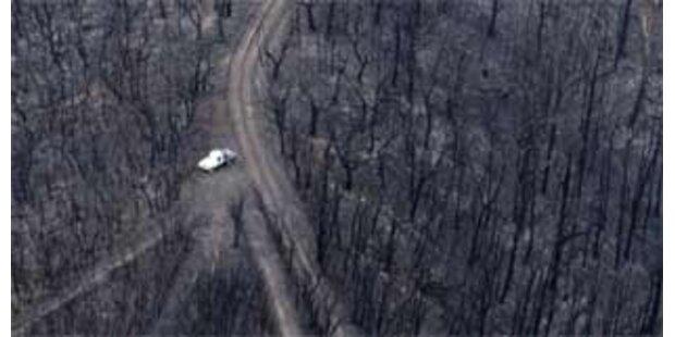 100 Polizisten jagen Brandstifter in Australien