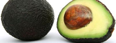 avocado_sxc