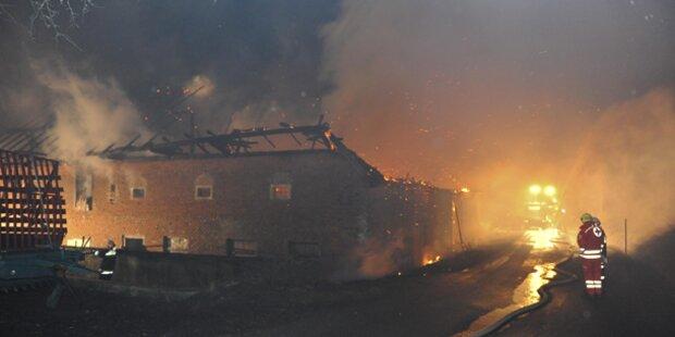 5 Kinder bei Bauernhofbrand gerettet