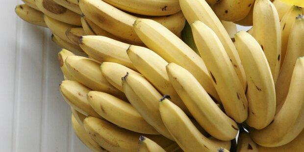Klimawandel: Bananenknappheit droht