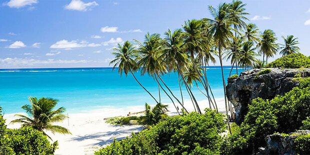 Auf Inselparadies: Millionär bietet Traumjob mit Haken