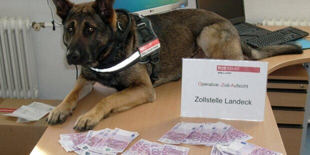 Zollfahnder stoppen Bargeld-Schmuggler