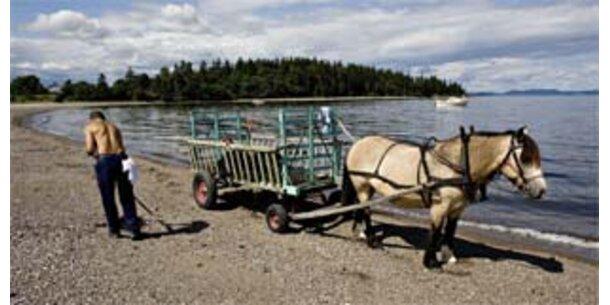 Norwegisches Gefängnis ohne Schloss und Riegel