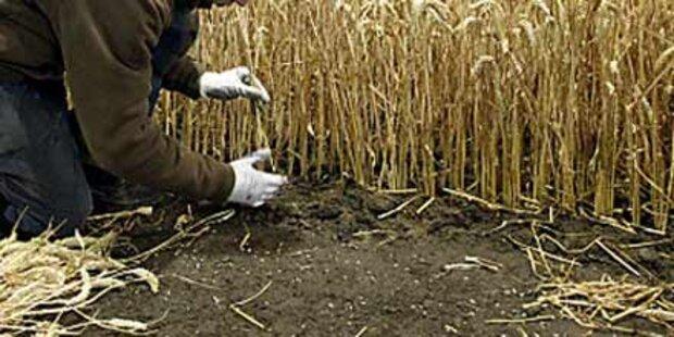 Bauer hielt Arbeiter als Hof-Sklaven