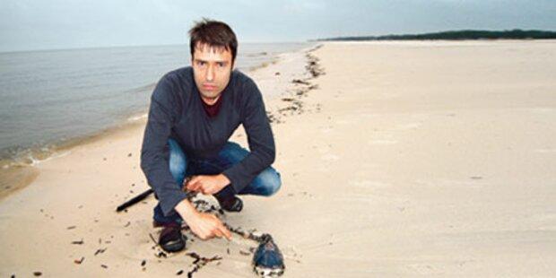 Live-Bericht vom Todes-Strand