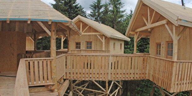 Das ist das Baumkronen-Hotel