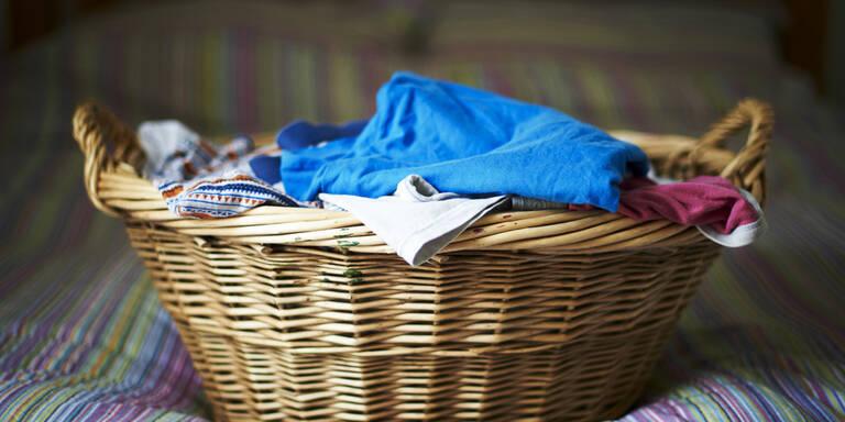 Hungrige Bettwanzen gehen an schmutzige Wäsche