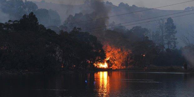 Dutzende Verletzte bei Buschbränden