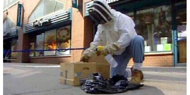 Bienen ließen Personal nicht heimgehen
