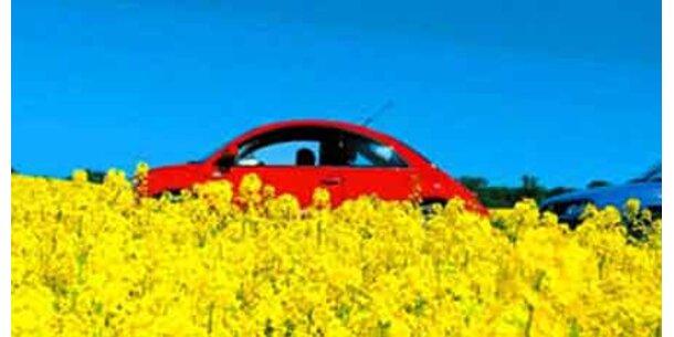 Strafzölle gegen US-Biodiesel