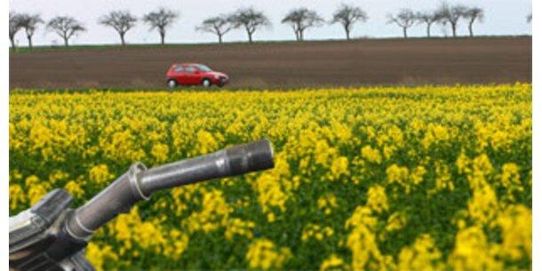 400.000 Autos durch mehr Biosprit gefährdet