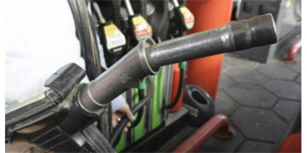 Biodiesel bleibt weiter umstritten