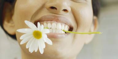 Diese Blumen können Sie essen