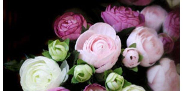 Welche Blume Sie schenken sollten