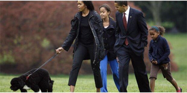 First Dog Bo hält Obamas auf Trab