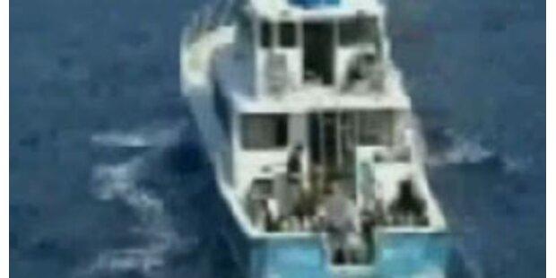Video zeigt Haiopfer im Todeskampf