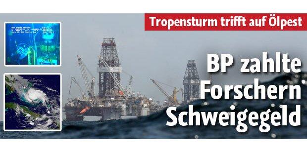 BP zahlte Forschern Schweigegeld