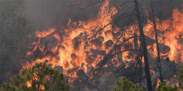 Verheerdende Waldbrände in Texas