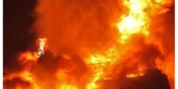 Mehrere Schweine bei Feuer auf Bauernhof verbrannt