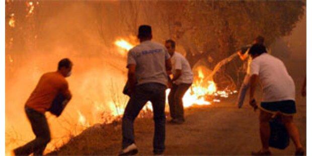 Dutzende Tote durch Brände in Griechenland