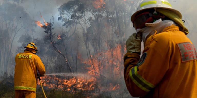 Buschbrände bedrohen nun Sydney