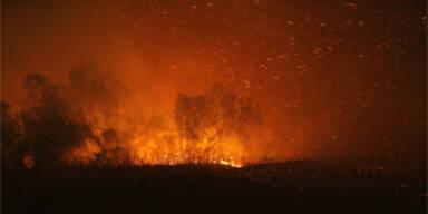 brand_kalifornien