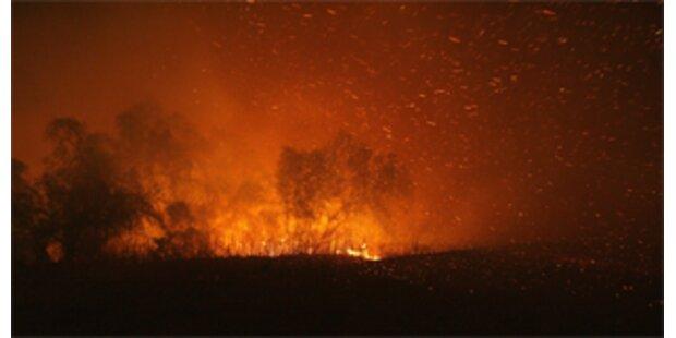 Lagerfeuer löste Flammeninferno in Kalifornien aus