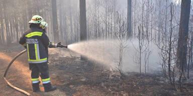 Föhrenwald: Löscharbeiten beendet