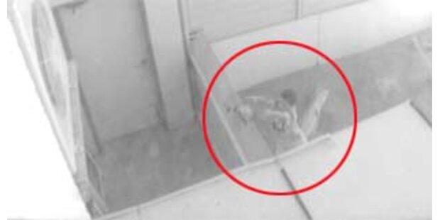 Video des Zoo-Blutbads aufgetaucht
