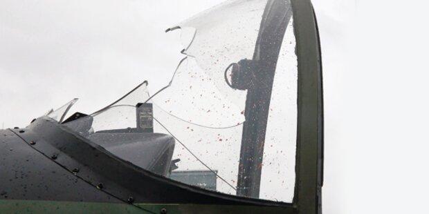 Vogel demoliert Heeres- Flugzeug