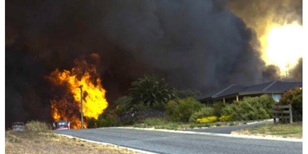 Verheerende Buschbrände in Australien