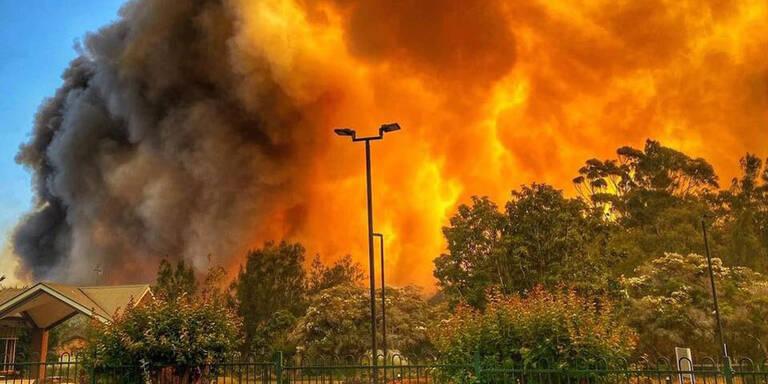 Buschbrände in Australien: Tausende demonstrierten gegen Regierung