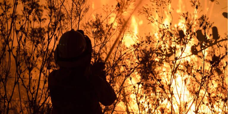 Neue Feuer in Australien ausgebrochen