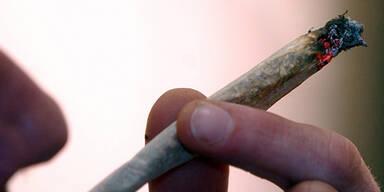 Cannabis: Begehren im Parlament