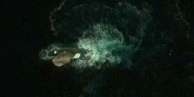 Monster-Kraken auf Google Earth entdeckt